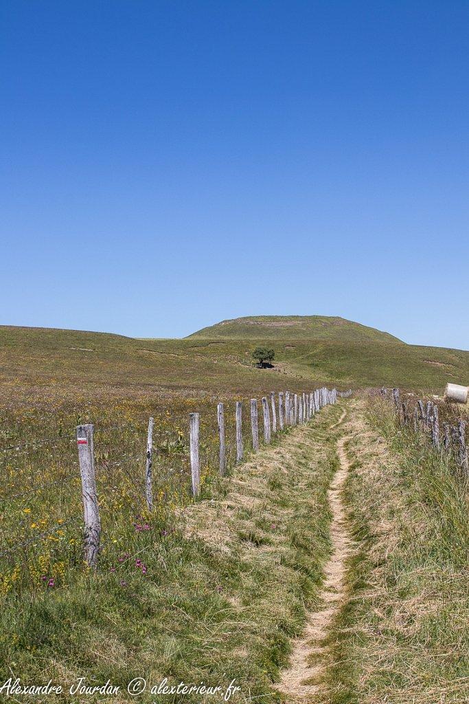 Plateau du Cézallier